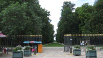 Balade fatale en rosalie ! Un accident tragique et rarissime survient dans un parc de Dijon