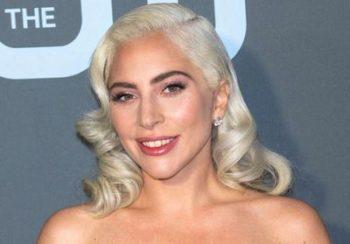 Lady Gaga : deux de ses chiens enlevés et son promeneur blessé par balles