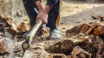 Réduit à l'esclavage par sa soeur, un homme de 40 kilos au corps supplicié révèle son calvaire